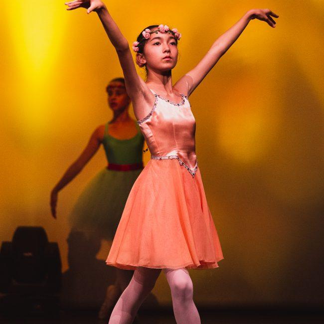 Photographe Spectacle Danse